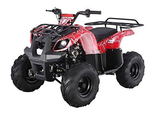 Atv 125cc Fully Automatic with Reverse 1 Year Engine Warranty - Atv 125cc Fully Automatic with Reverse 1 Year Engine Warranty